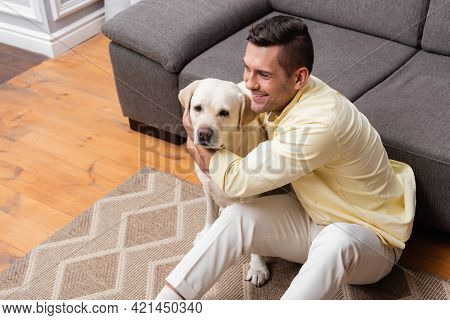 High Angle View Of Joyful Man Cuddling Labrador Dog While Sitting On Couch Near Sofa.
