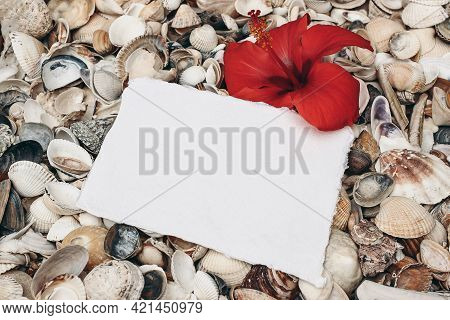 Closeup Of White And Gray Pebble Stones And Sea Shells On Beach. Blank Greeting Card, Invitation Moc