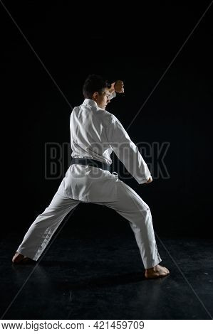 Male karate fighter in a combat stance
