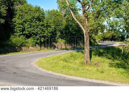 Serpentine Road Winding Uphill. Tall Trees Along The Pass In Bright Afternoon Light In Summertime
