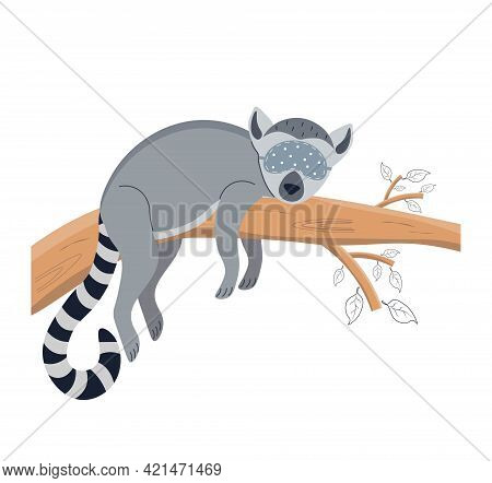 Lemur Sleeping On A Tree Wearing A Sleep Mask. Cute Lemur. Animal Sleeps On A Tree. Character For A