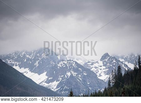 Incredible View Of The Mighty Snow-capped Mountains, Incredible Wildlife