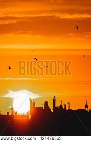 Sunset Over City Skyline, Vertical Photo. Defocused