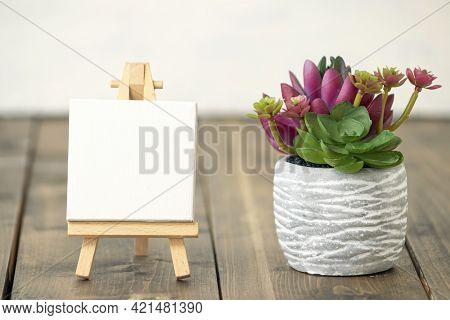Spring Or Summer Composition On A Wooden Background. Bright, Beautiful Red And Green Cactuses In A C