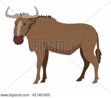 Gnu Wildebeest Isolated On A White Background. African Wildlife Animal. Vector Illustration