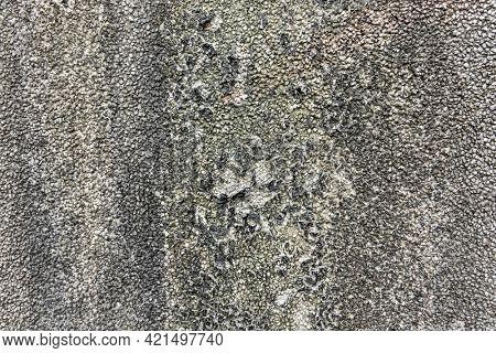 old mildewed cement wall, grunge background texture