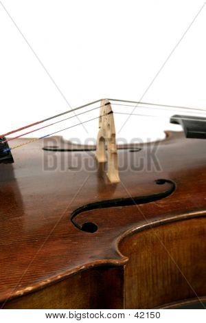 Isolated Cello