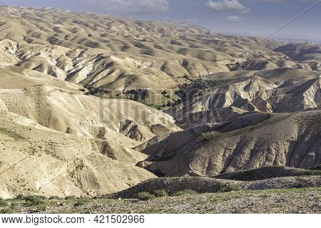 View Of The Slopes Of The Sandy Mountains Of The Judean Desert Covered With Spring Vegetation