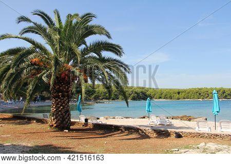 Resort Beach On Brac Island With Turquoise Clear Sea Water, Supetar, Brac, Croatia