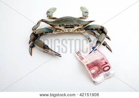 Blue Crab Holding A Bank Note
