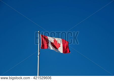 Canadian Flag Waving Against The Blue Sky.  Vancouver Bc Canada