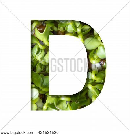 Font On Micro Greenery.the Letter D Cut Out Of Paper On The Background Of Sprouts Of Fresh Bright Mi