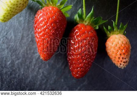 Ripening of strawberries on a slate wall.