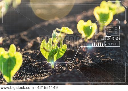 Agriculture And Artificial Intelligence Technology In Smart Farm With Precision Sensor For Monitorin