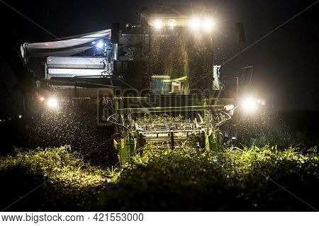 Tomato Harvester Working At Night. Vegas Bajas Del Guadiana, Spain