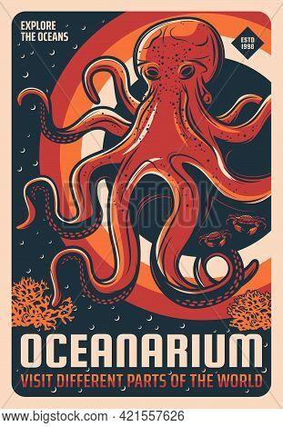 Oceanarium Aquarium Giant Pacific Octopus Retro Poster. Sketch Vector Sea Octopus, Stone Crabs And S