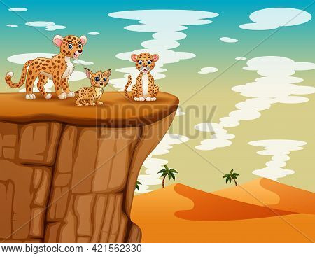 A Family Of Cheetah Playing On The Cliff