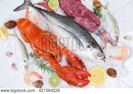 Fresh Fish And Seafood Plate With Shellfish Shrimps Prawns Crab Shell Squid Octopus Crab Lobster And
