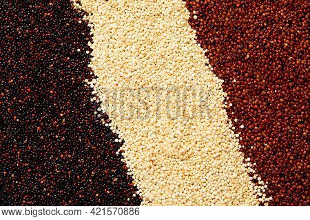 Set With Different Types Of Quinoa On Dark Background. Organic Food Concept.