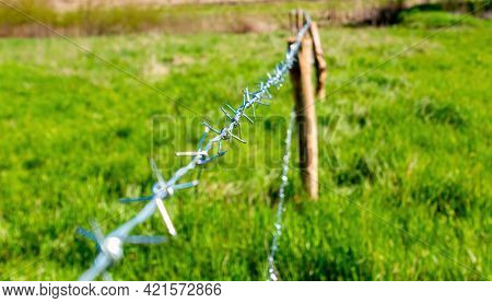 Metal Barbed Wire Fence Of A Farm Field. Barbed Wire. Wooden Post. Green Grass. Protective Fence. Ag