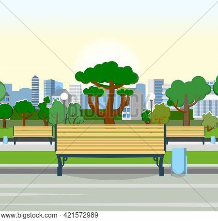 Bench. City Park Area. Trees, Shrubs And Lanterns. Beautiful Summer Cityscape In Restrained Colors.