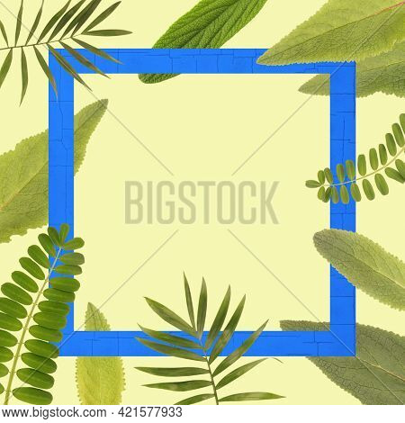 Beautiful plant leaves frame copy space background. Botanic layout with empty space on yellow backdrop