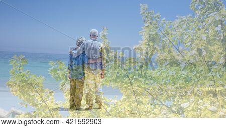 Composition of senior couple embracing on beach and trees in sunlight. healthy active retirement lifestyle concept digitally generated image.