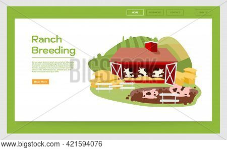 Ranch Breeding Landing Page Vector Template. Livestock And Cattle Farming Website Interface Idea Wit