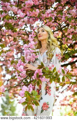 Harmony And Female Energy. Cherry Tree. Good Vibes. Floral Aroma. Spring Blossoming Tree. Spring Sym