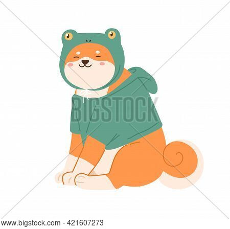 Cute Kawaii Dog Of Shiba Inu Breed Wearing Canine Clothes. Happy Smiling Puppy Sitting In Hoodie And