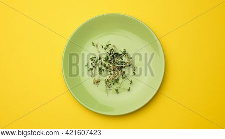 Green Sprouts Of Chia, Arugula And Mustard In A White Round Plate, Top View. A Healthy Food Suppleme