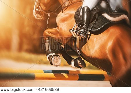 Rear View As A Bay Racehorse With A Rider In The Saddle Quickly Jumps Over The High Yellow Barrier I