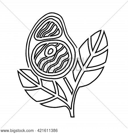 Plant Based Meat Concept. Vegan Product. Steak And Leaves Isolated On White Background. Organic Natu
