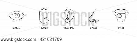 Five Human Senses One Line Drawing Design Icon Set. Vision Touch Hearing Taste Smell Senses Collecti