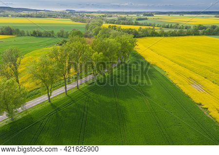 Spring In The Sudetes Foothills. Undulating, Undulating, Uneven Terrain That Is Part Of The Kaczawsk