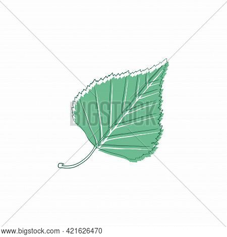 Graceful Green Leaves. Flat Twig. Vector Isolated Element. Garden Plant. Icon. Summer Or Spring Desi