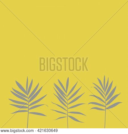 Palm branches leaves shadow on yellow background square layout illustration