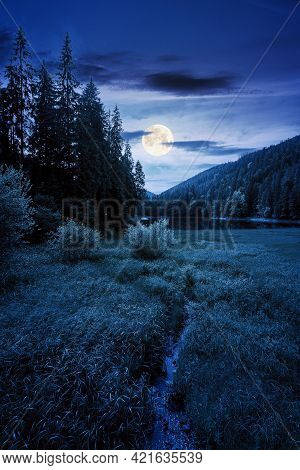 Mountain Summer Landscape With Lake At Night. Beautiful Nature Scenery Of Synevyr National Park, Ukr
