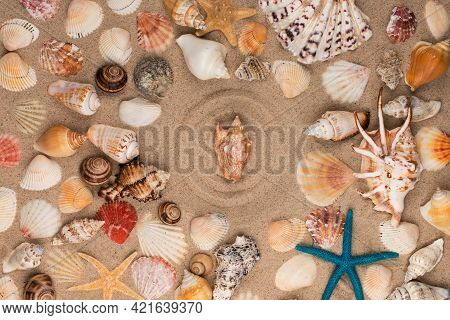 Seashell In The Center Of A Circle Made Of Sand, Among Seashells And Stars. Top View