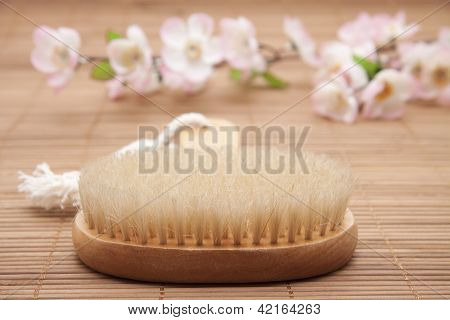 Wellness and Massage Brush on Wooden underlayment