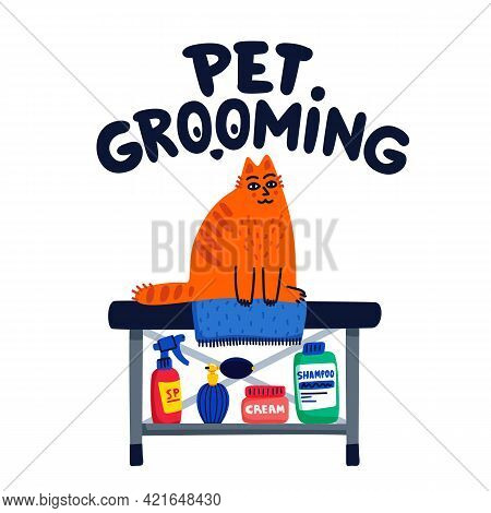 Pet Grooming Concept. Cat Care, Grooming, Hygiene, Health. Pet Shop, Accessories. Flat Style Vector