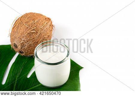 Organic Coconut Yogurt , Dairy Free Yogurt, Probiotic Food, Gut Health, Keto, Ketogenic, Low Carb Di