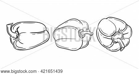 Pepper Painted.set Of Paprika On A White Background.asketch Of Vegetables With Mascara .vector Illus
