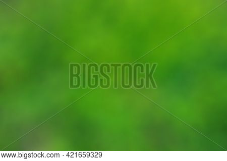Abstract Blur Green Color For Background, Blurred And Defocused Effect Spring Or Summer Concept Desi
