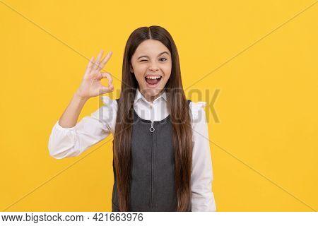 Winking Schoolgirl In School Uniform Happy Smile Gesturing Ok Sing Yellow Background, Agreed