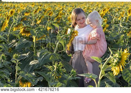 Mom And Daughter In Sunflowers Field. Portrait Of Mom And Little Child On Nature. Tenderness And Car