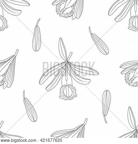 Vector Graphic Seamless Pattern With Vanilla Plant -01
