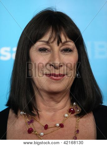 LOS ANGELES - JAN 06:  ANJELICA HUSTON arriving to TCA Winter Press Tour 2012: NBC Party  on January 06, 2012 in Pasadena, CA