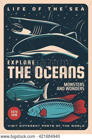 Ocean Undersea World And Sea Life, Underwater Travel Vector Retro Poster. Oceanarium Wild Life And U