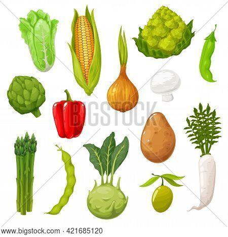 Cartoon Vegetables, Farm Harvest Or Farmer Market Veggies. Vector Kohlrabi, Lettuce And Radish, Pea,